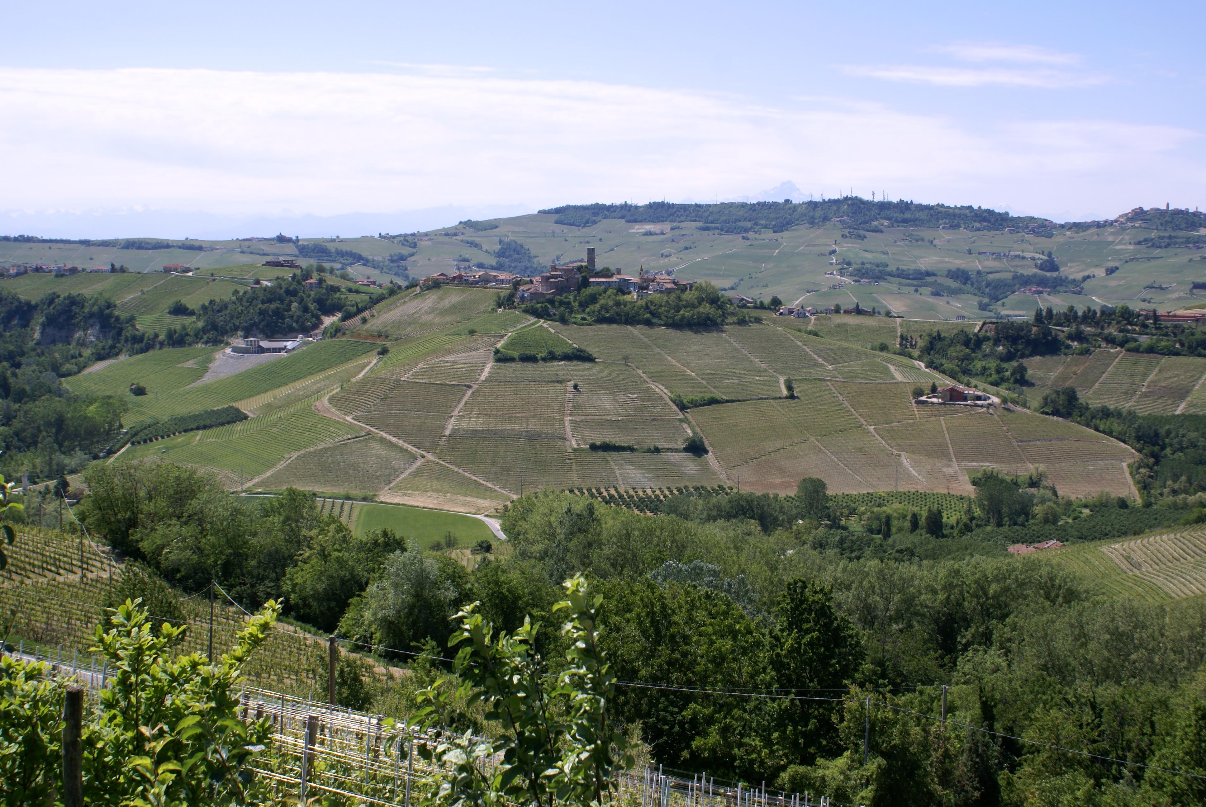 Castiglione Falletto Italy Barolo