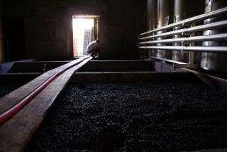 Quinta do Pai Americo / Seacampo winery lagar open fermentation