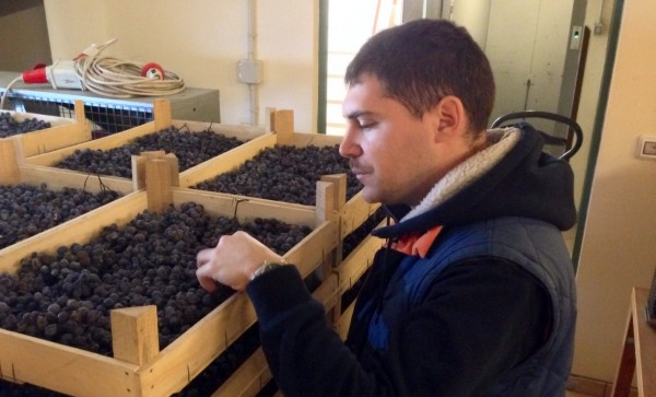 Francesco Rigoli of Giuseppe Quintarelli winery