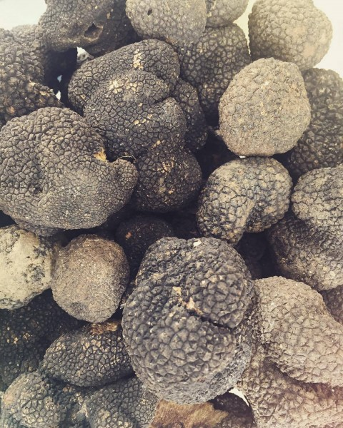 Truffles: a typical tertiary aroma of aged Barolo.